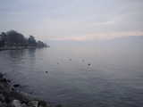 Lausanne, Looking Out Across the Lake in Winter (27 kbytes) - Click to enlarge