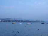 Zurich, Sailing Boats (25 kbytes) - Click to enlarge